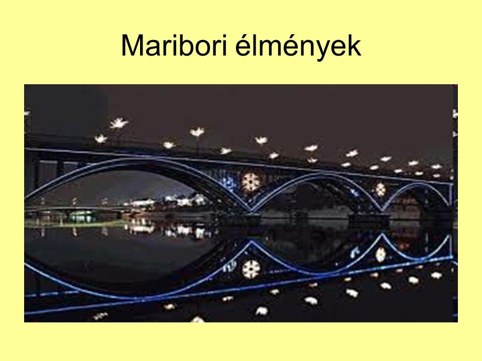 Maribori élmények
