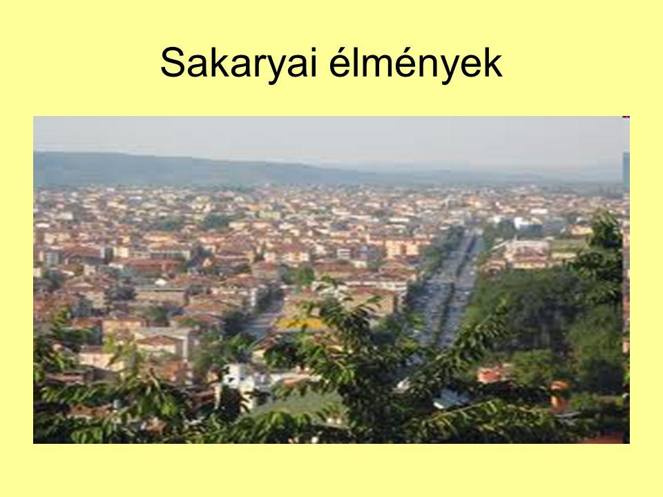 Sakaryai élmények
