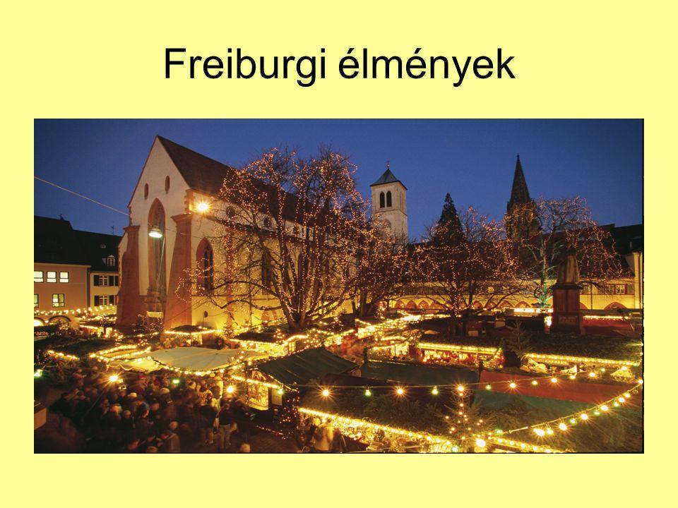 Freiburgi élmények