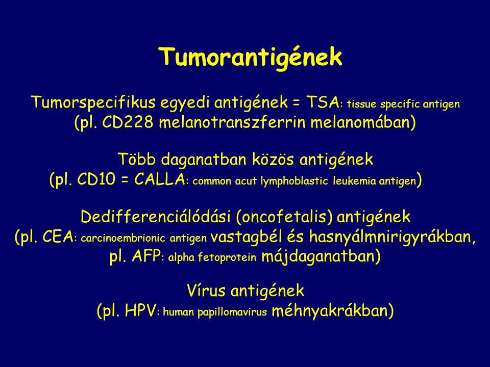 Tumorantigének Tumorspecifikus egyedi antigének = TSA : tissue specific antigen (pl. CD228 melanotranszferrin melanomában) Több daganatban közös antig