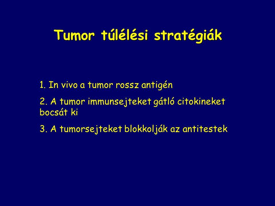 Tumor túlélési stratégiák 1. In vivo a tumor rossz antigén 2. A tumor immunsejteket gátló citokineket bocsát ki 3. A tumorsejteket blokkolják az antit