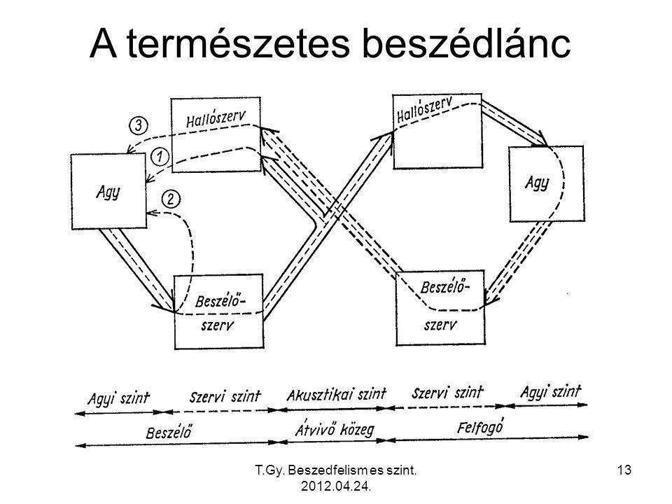 T.Gy. Beszedfelism es szint. 2012.04.24. 13 A természetes beszédlánc