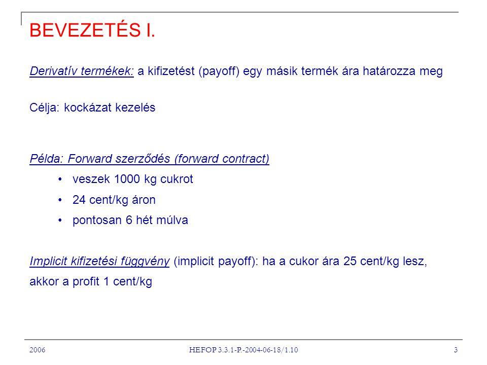 2006 HEFOP 3.3.1-P.-2004-06-18/1.10 3 BEVEZETÉS I.