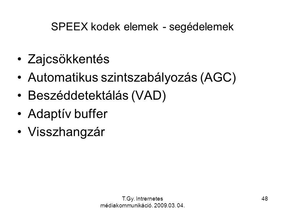 T.Gy. Intrernetes médiakommunikáció. 2009.03. 04.