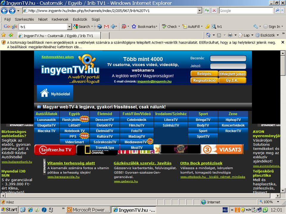 T.Gy. Intrernetes médiakommunikáció. 2009.05. 04. 43