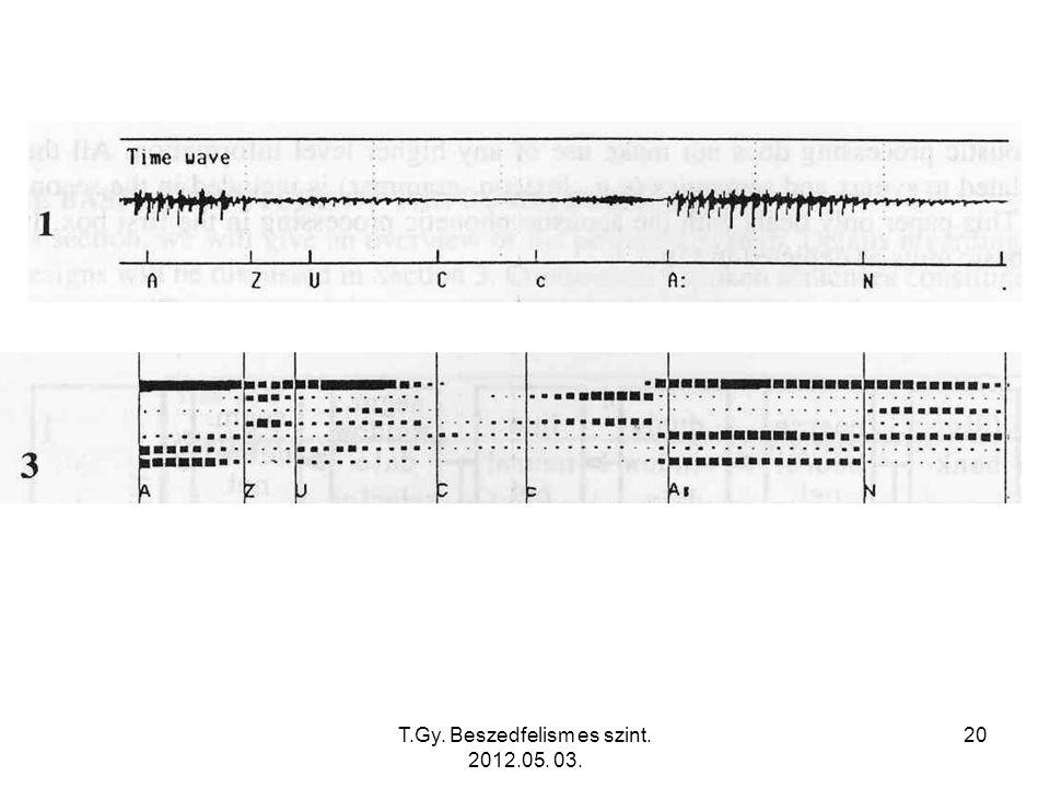 T.Gy. Beszedfelism es szint. 2012.05. 03. 20