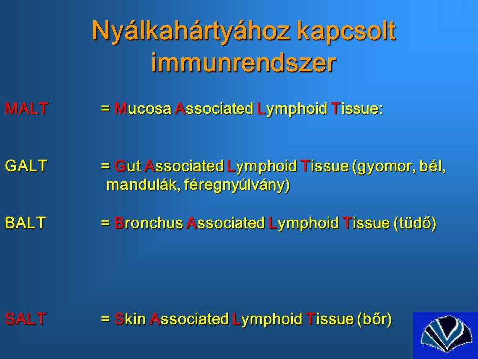 Nyálkahártyához kapcsolt immunrendszer MALT= Mucosa Associated Lymphoid Tissue: GALT= Gut Associated Lymphoid Tissue (gyomor, bél, mandulák, féregnyúlvány) mandulák, féregnyúlvány) BALT= Bronchus Associated Lymphoid Tissue (tüdő) SALT= Skin Associated Lymphoid Tissue (bőr)