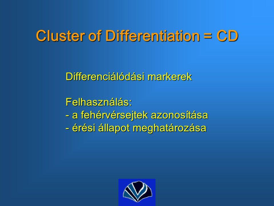 Cluster of Differentiation = CD Differenciálódási markerek Felhasználás: - a fehérvérsejtek azonosítása - érési állapot meghatározása