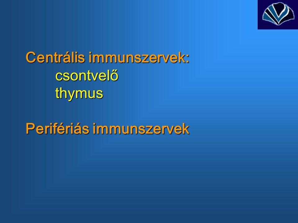 Centrális immunszervek: csontvelő thymus Perifériás immunszervek