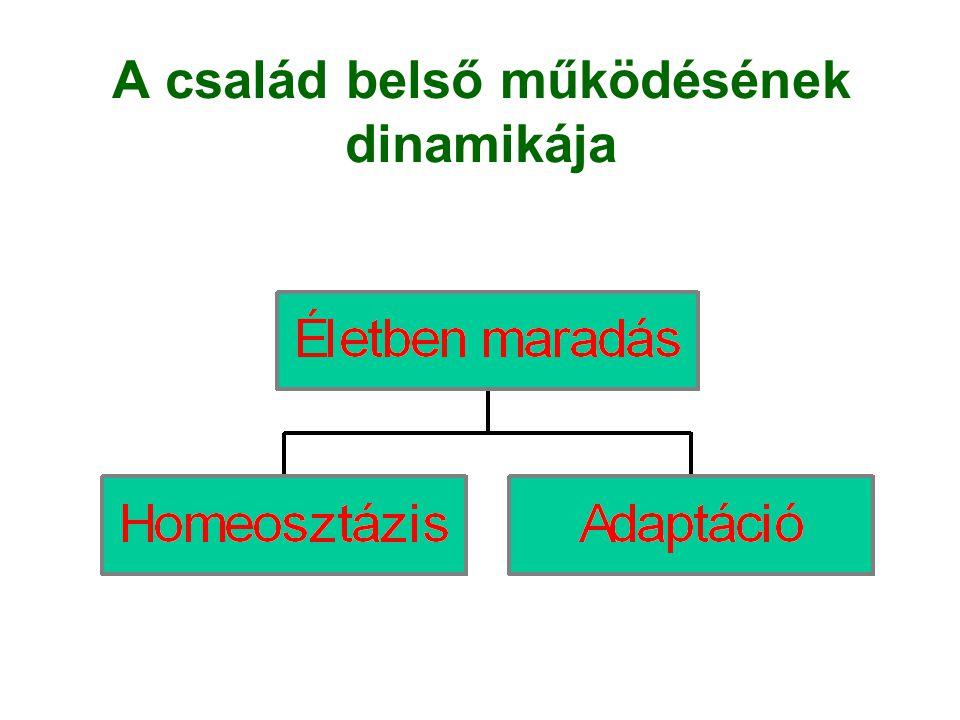 A család belső működésének dinamikája