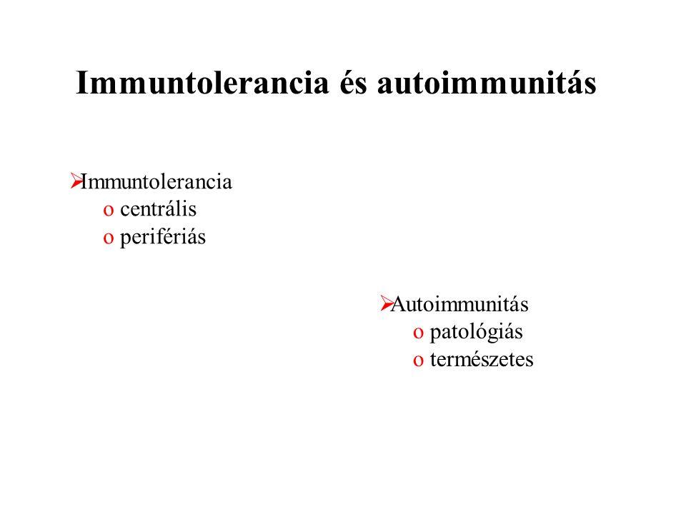 Immuntolerancia és autoimmunitás  Immuntolerancia o centrális o perifériás  Autoimmunitás o patológiás o természetes