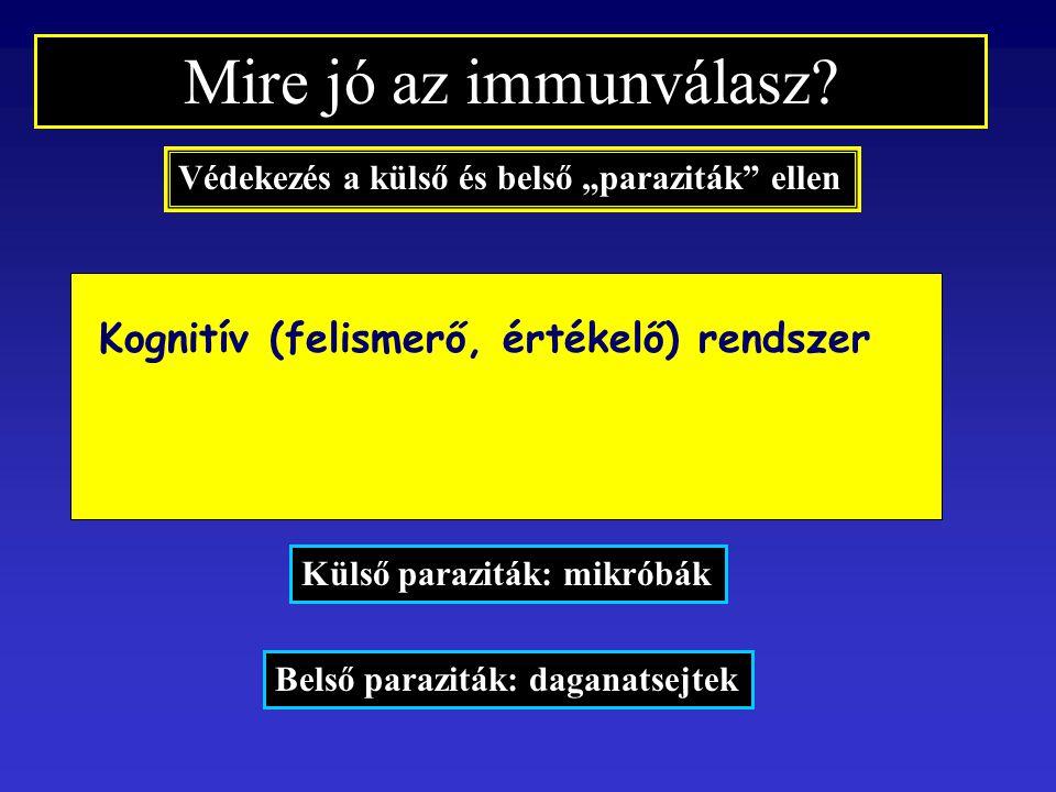 """Mire jó az immunválasz? Védekezés a külső és belső """"paraziták"""" ellen Külső paraziták: mikróbák Belső paraziták: daganatsejtek Kognitív (felismerő, ért"""