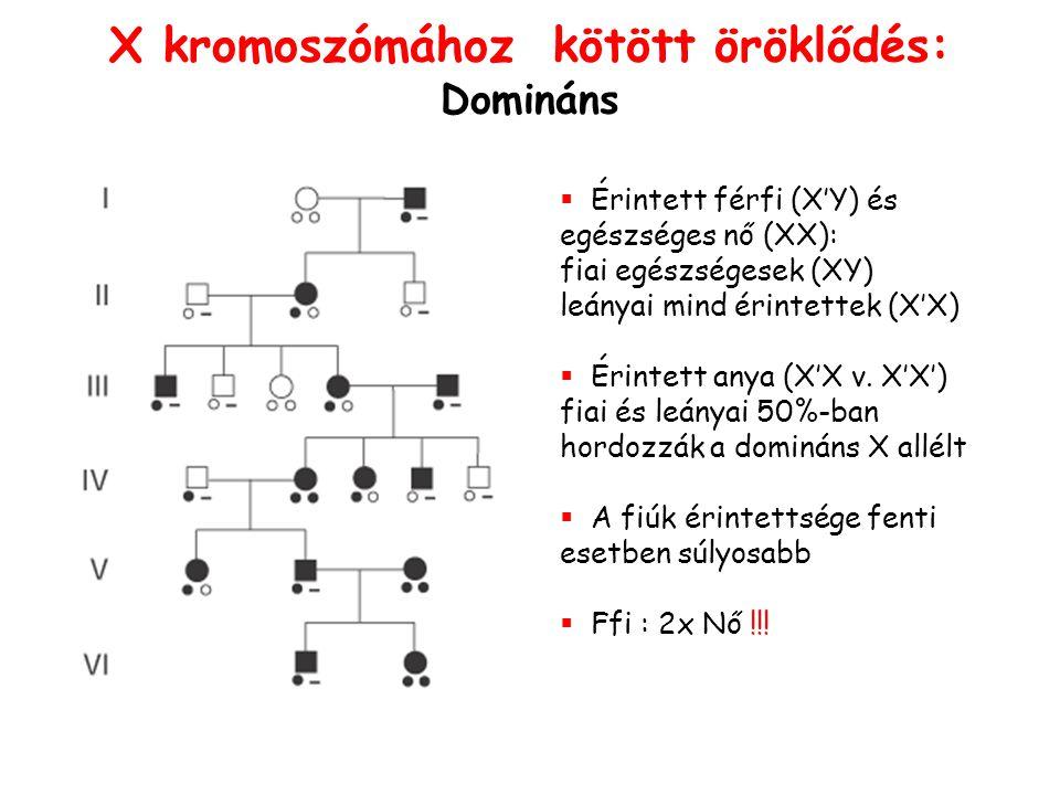 X kromoszómához kötött öröklődés: Domináns   Érintett férfi (X'Y) és egészséges nő (XX): fiai egészségesek (XY) leányai mind érintettek (X'X)   Ér