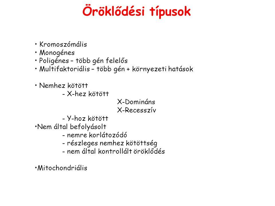 Mitochondriális betegségek CardiomyopathiatRNS Diabetesdupl.; tRNS SüketségrRNS, tRNS Ophthalmoplegia (Kearns-Sayre sy.)dupl., tRNS N.