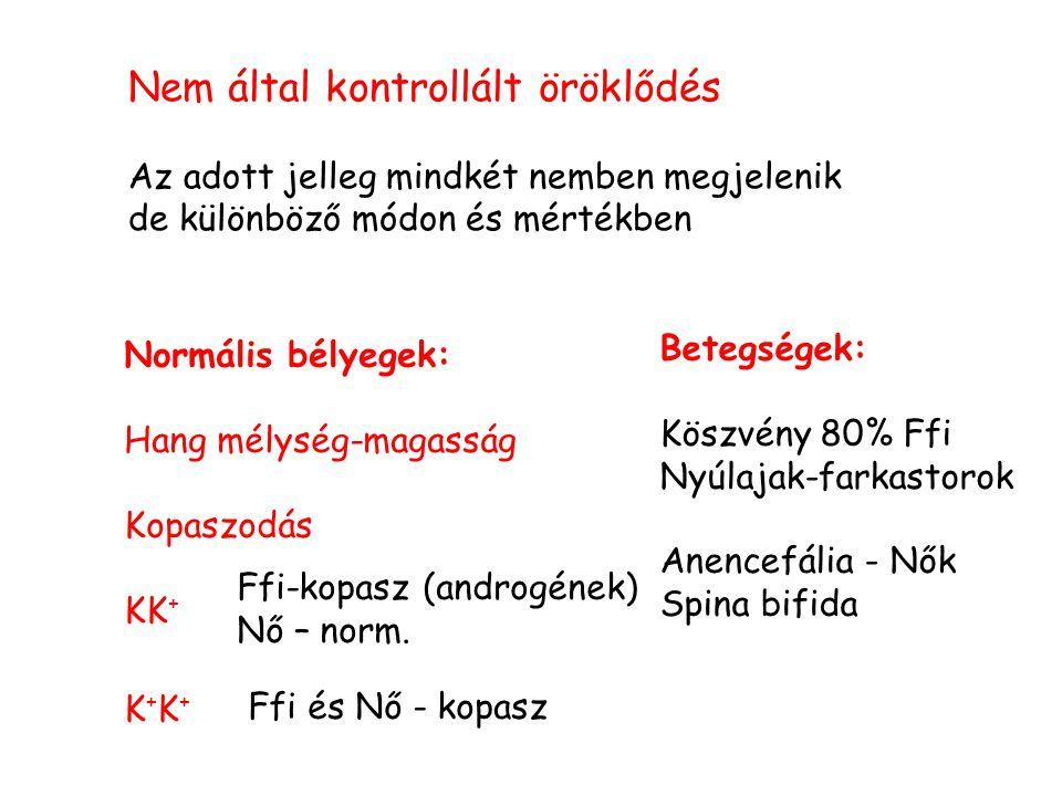 Nem által kontrollált öröklődés Az adott jelleg mindkét nemben megjelenik de különböző módon és mértékben Normális bélyegek: Hang mélység-magasság Kop