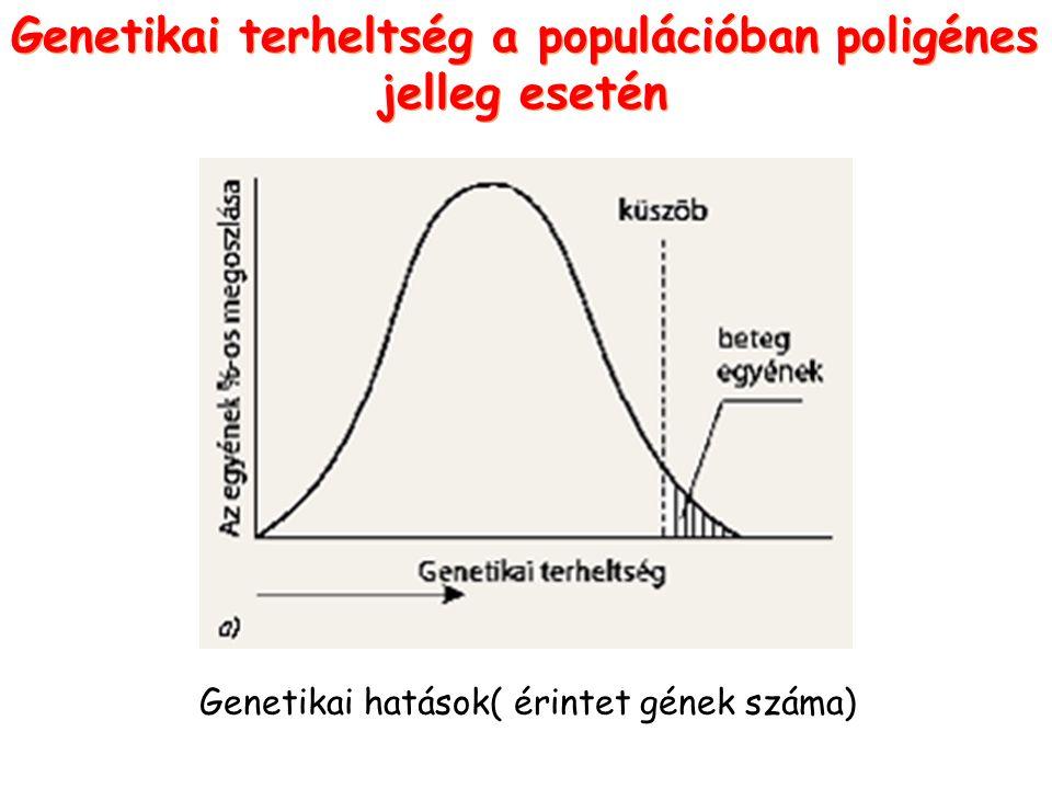 Genetikai terheltség a populációban poligénes jelleg esetén Genetikai terheltség a populációban poligénes jelleg esetén Genetikai hatások( érintet gén