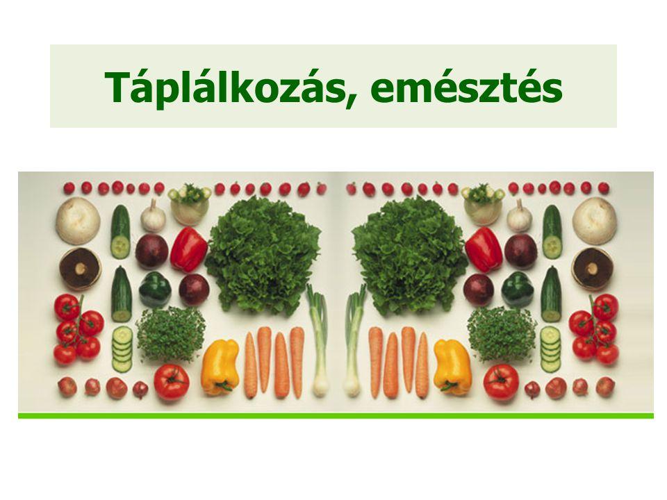 Fehérjék Növekedéshez és fejlődéshez szükséges Aminosavakból épülnek fel Élethez szükséges 9 aminosav, amit a szervezet nem képes előállítani = esszenciális aminosavak Állati fehérjék – teljes értékűek Növényi fehérjék – nem teljes értékűek, hiányosak