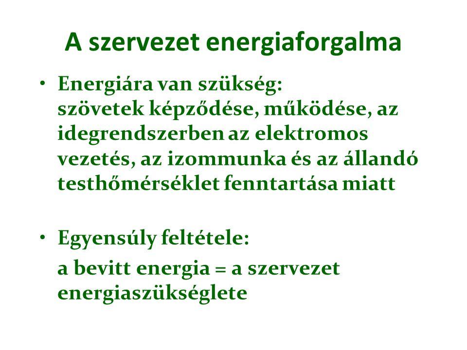 A szervezet energiaforgalma Energiára van szükség: szövetek képződése, működése, az idegrendszerben az elektromos vezetés, az izommunka és az állandó