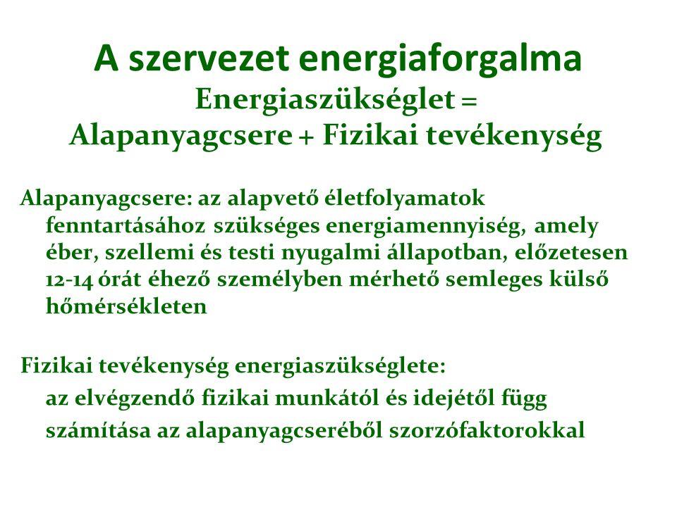 A szervezet energiaforgalma Energiaszükséglet = Alapanyagcsere + Fizikai tevékenység Alapanyagcsere: az alapvető életfolyamatok fenntartásához szükség