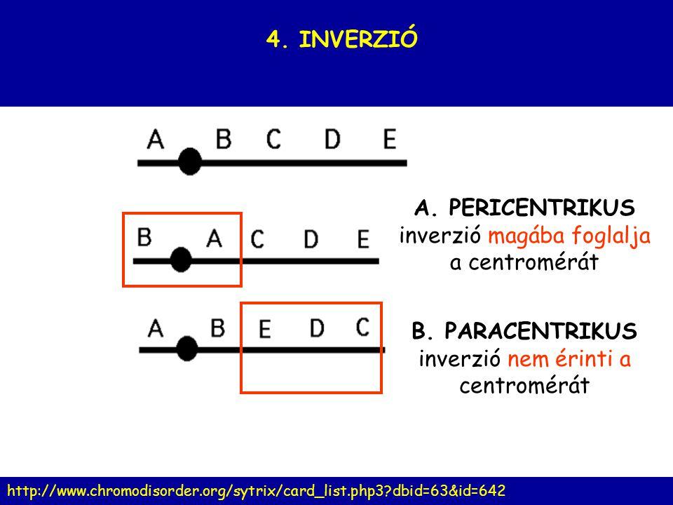 A. PERICENTRIKUS inverzió magába foglalja a centromérát B. PARACENTRIKUS inverzió nem érinti a centromérát 4. INVERZIÓ http://www.chromodisorder.org/s