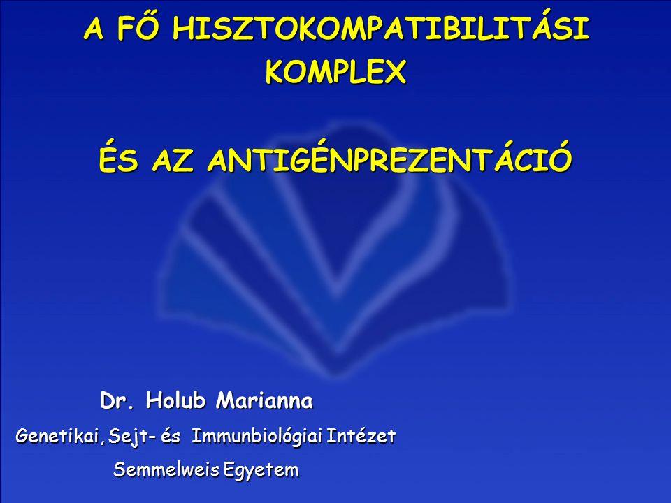 A FŐ HISZTOKOMPATIBILITÁSI KOMPLEX Dr. Holub Marianna Genetikai, Sejt- és Immunbiológiai Intézet Semmelweis Egyetem ÉS AZ ANTIGÉNPREZENTÁCIÓ