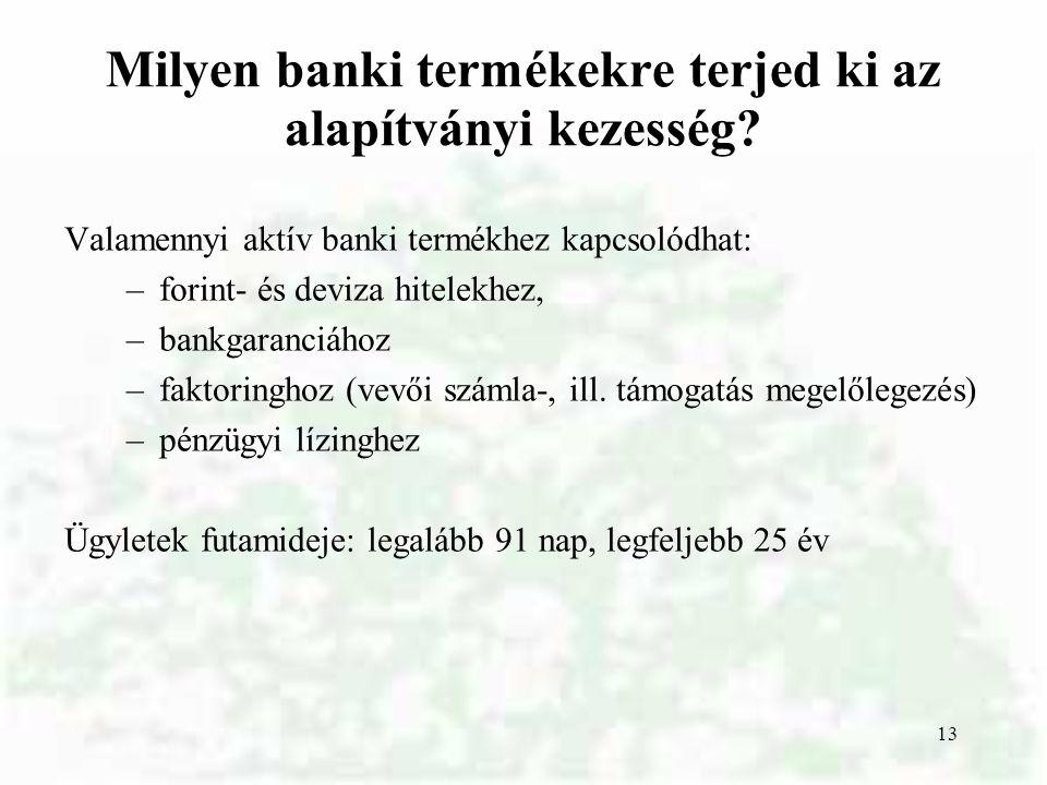 13 Milyen banki termékekre terjed ki az alapítványi kezesség? Valamennyi aktív banki termékhez kapcsolódhat: –forint- és deviza hitelekhez, –bankgaran