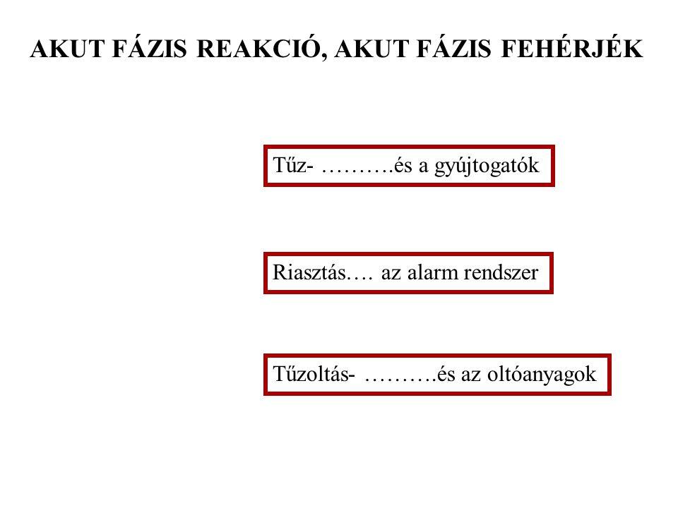 Gyulladás (akut fázis reakció) és fertőzés Dr. Falus András egyetemi tanár 2005. április 11.