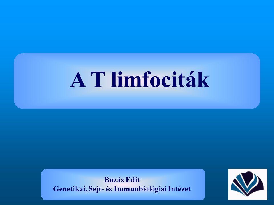 A T limfociták Buzás Edit Genetikai, Sejt- és Immunbiológiai Intézet