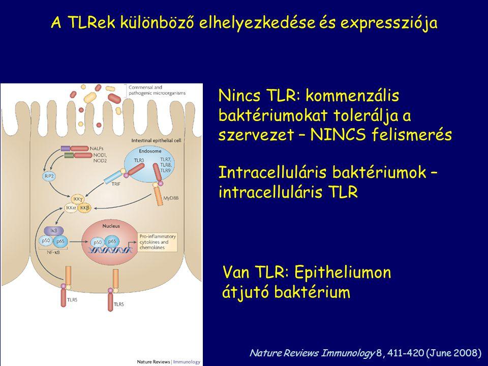 A TLRek különböző elhelyezkedése és expressziója Nincs TLR: kommenzális baktériumokat tolerálja a szervezet – NINCS felismerés Van TLR: Epitheliumon átjutó baktérium Intracelluláris baktériumok – intracelluláris TLR Nature Reviews Immunology 8, 411-420 (June 2008)