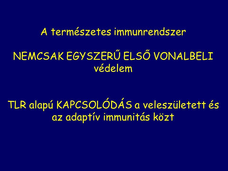 A természetes immunrendszer NEMCSAK EGYSZERŰ ELSŐ VONALBELI védelem TLR alapú KAPCSOLÓDÁS a veleszületett és az adaptív immunitás közt