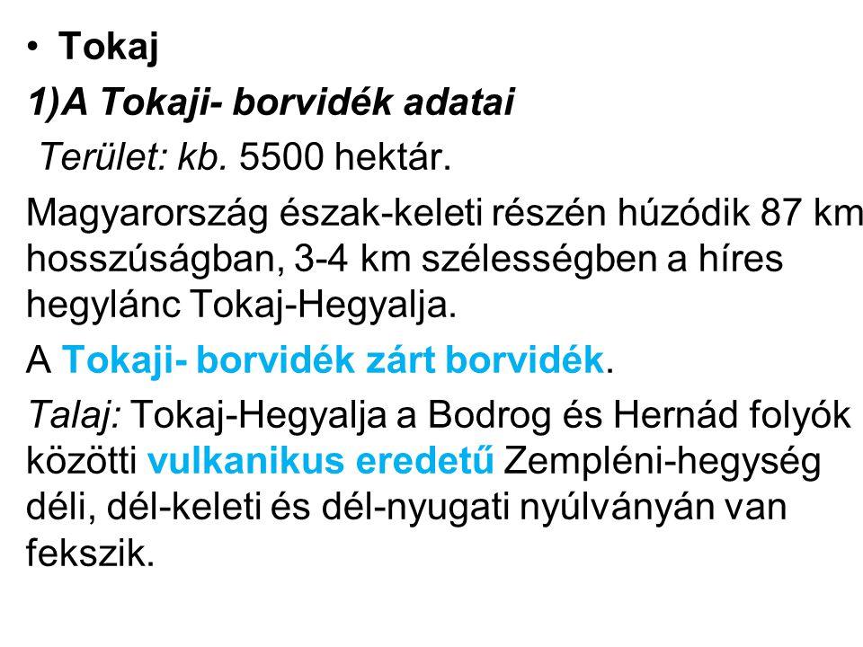 A megállapodás alapján a szerződés mellékletét képező közös nyilatkozat értelmében a Tokaji megjelölés minden változata (Tocai, Tokayer, Tokajské) mint magyar megjelölés részesül oltalomban.