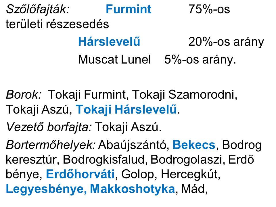 Szőlőfajták:Furmint 75%-os területi részesedés Hárslevelű20%-os arány Muscat Lunel 5%-os arány.