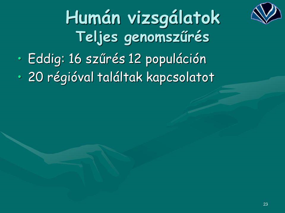23 Humán vizsgálatok Teljes genomszűrés Eddig: 16 szűrés 12 populációnEddig: 16 szűrés 12 populáción 20 régióval találtak kapcsolatot20 régióval talál