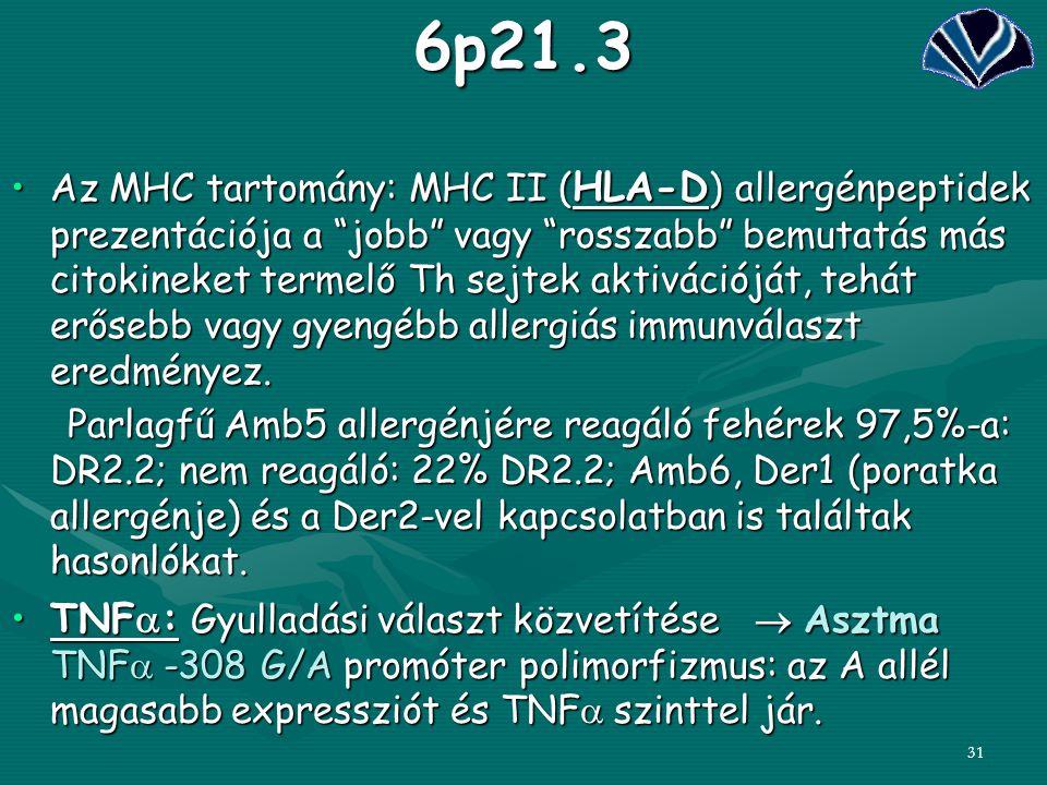 """316p21.3 Az MHC tartomány: MHC II ( HLA-D ) allergénpeptidek prezentációja a """"jobb"""" vagy """"rosszabb"""" bemutatás más citokineket termelő Th sejtek aktivá"""