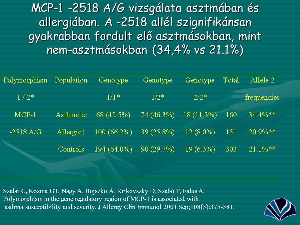 35 MCP-1 -2518 A/G vizsgálata asztmában és allergiában. A -2518 allél szignifikánsan gyakrabban fordult elő asztmásokban, mint nem-asztmásokban (34,4%