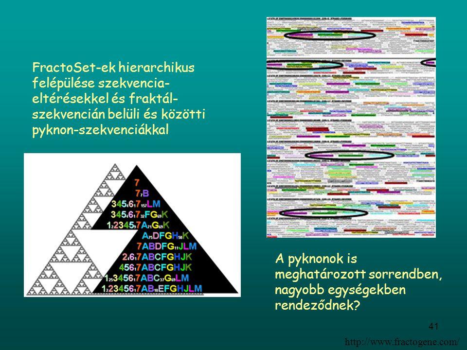 41 FractoSet-ek hierarchikus felépülése szekvencia- eltérésekkel és fraktál- szekvencián belüli és közötti pyknon-szekvenciákkal A pyknonok is meghatá