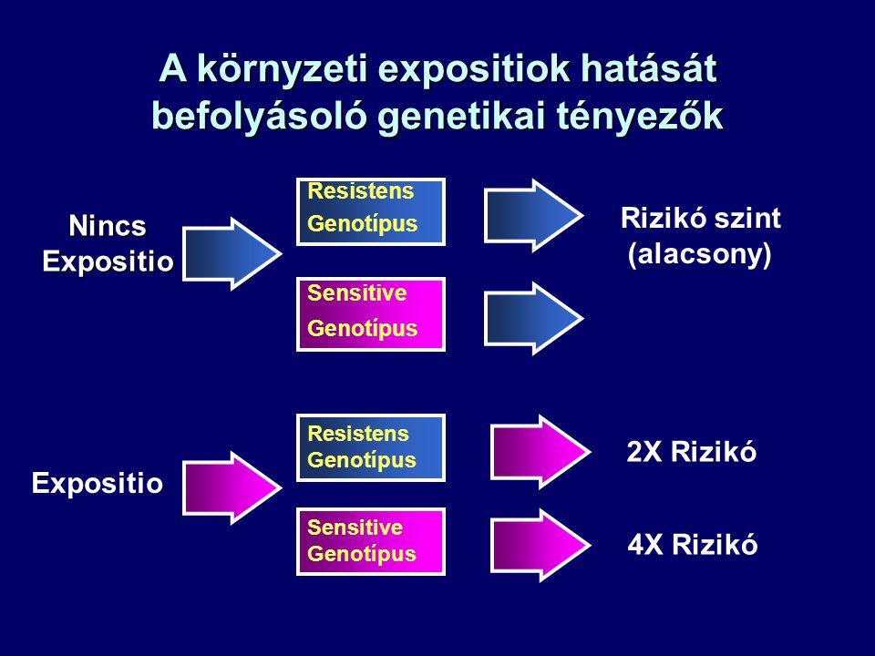 A környzeti expositiok hatását befolyásoló genetikai tényezők Expositio Nincs Expositio 4X Rizikó 2X Rizikó Sensitive Genotípus Resistens Genotípus Ri