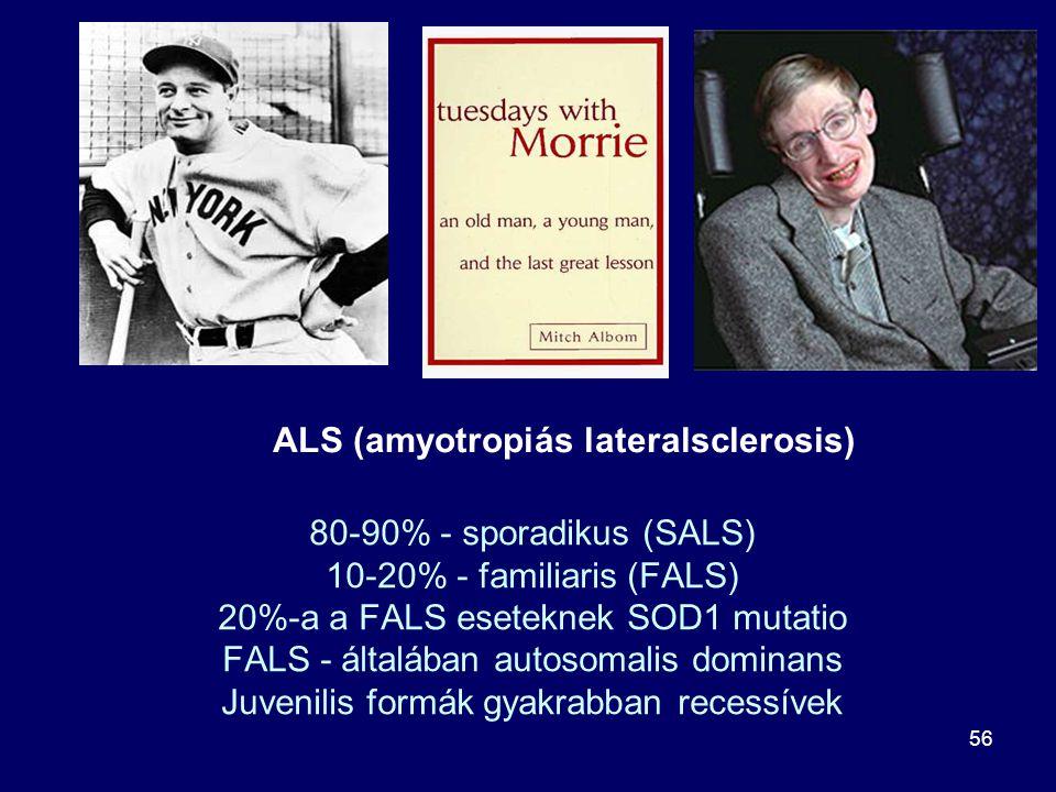 56 80-90% - sporadikus (SALS) 10-20% - familiaris (FALS) 20%-a a FALS eseteknek SOD1 mutatio FALS - általában autosomalis dominans Juvenilis formák gy