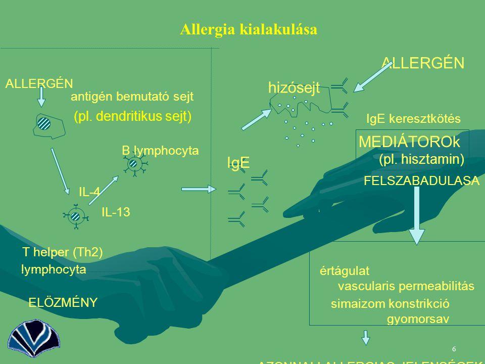17 Humán eredmény: Asztmások tüdejében alacsonyabb a T-bet expresszió, mint nem-asztmásokban.Humán eredmény: Asztmások tüdejében alacsonyabb a T-bet expresszió, mint nem-asztmásokban.
