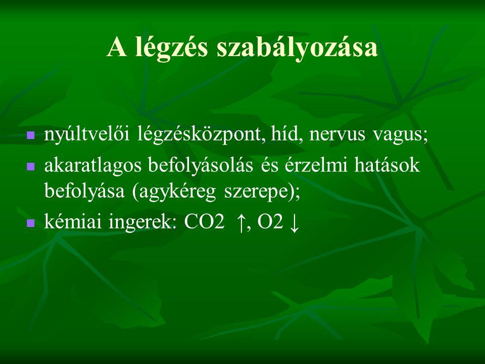 A légzés szabályozása nyúltvelői légzésközpont, híd, nervus vagus; akaratlagos befolyásolás és érzelmi hatások befolyása (agykéreg szerepe); kémiai in