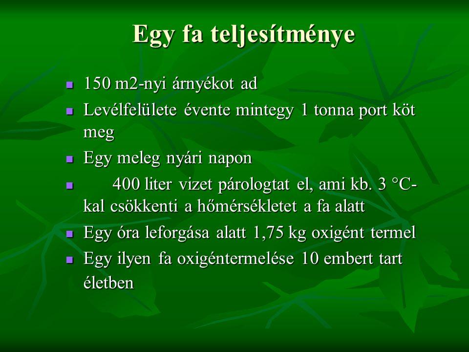 Egy fa teljesítménye Egy fa teljesítménye 150 m2-nyi árnyékot ad 150 m2-nyi árnyékot ad Levélfelülete évente mintegy 1 tonna port köt meg Levélfelület