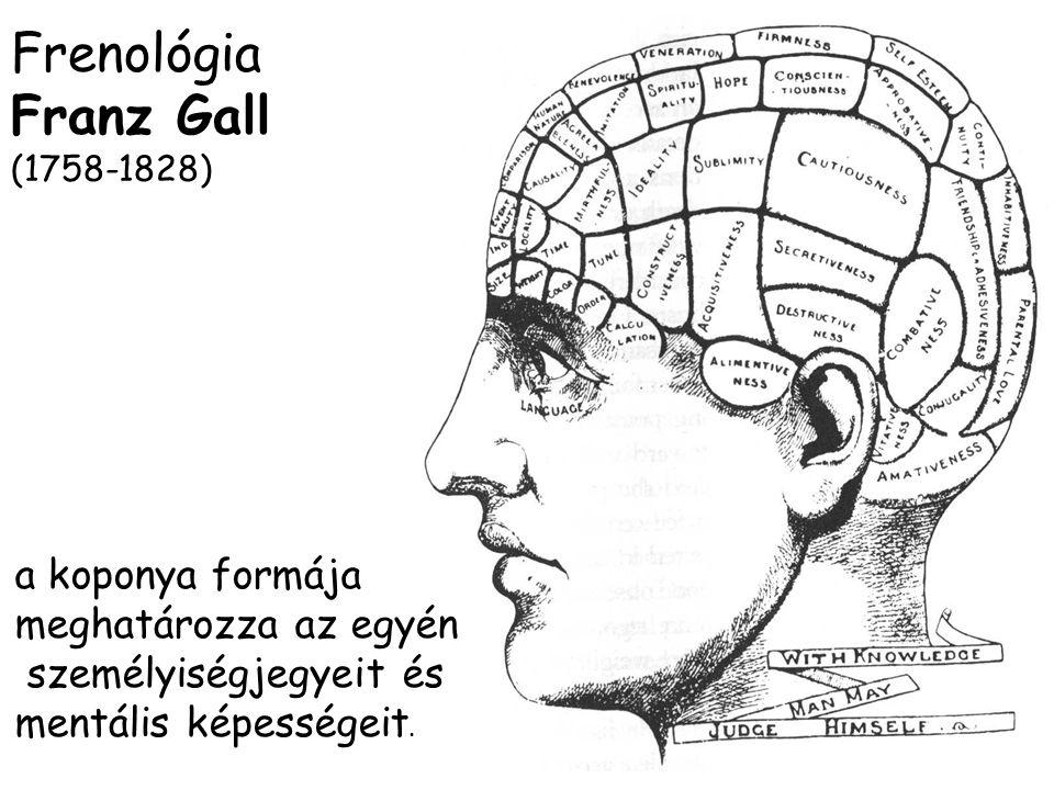 Frenológia Franz Gall (1758-1828) a koponya formája meghatározza az egyén személyiségjegyeit és mentális képességeit.