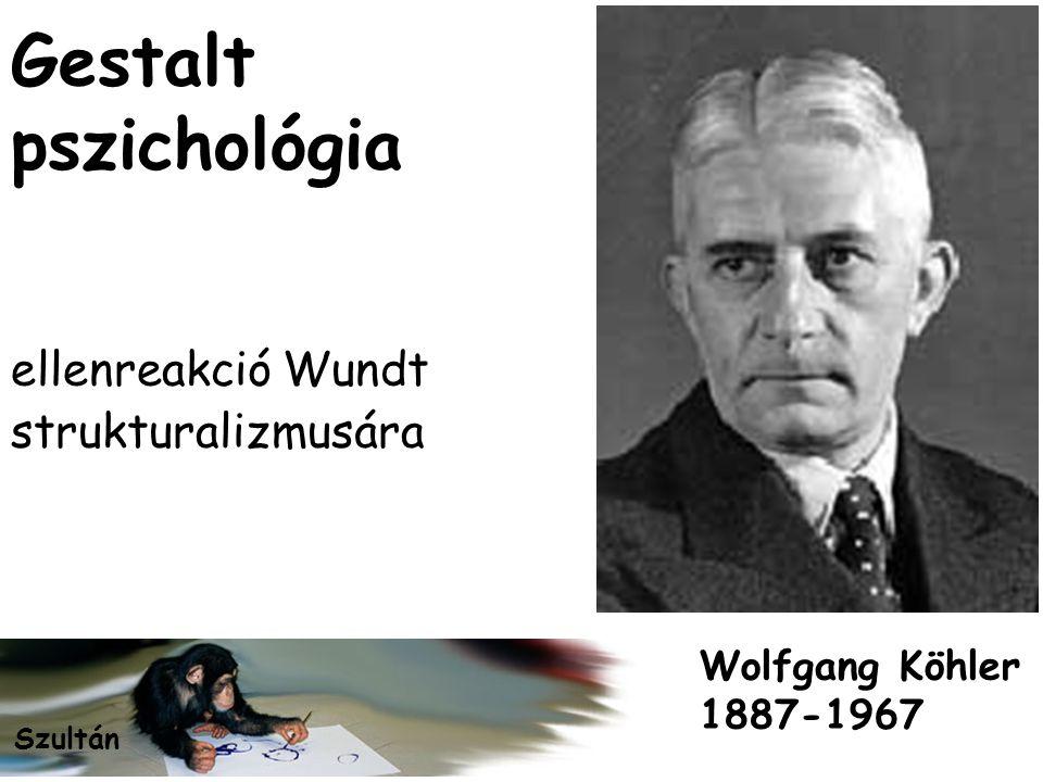 Gestalt pszichológia ellenreakció Wundt strukturalizmusára Wolfgang Köhler 1887-1967 Szultán