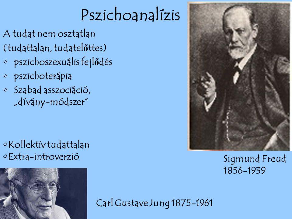 """A tudat nem osztatlan (tudattalan, tudatel ő ttes) pszichoszexuális fejl ő dés pszichoterápia Szabad asszociáció, """"dívány-módszer Carl Gustave Jung 1875-1961 Sigmund Freud 1856-1939 Kollektív tudattalan Extra-introverzió Pszichoanalízis"""
