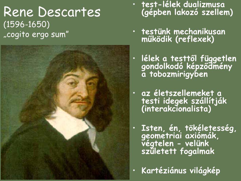 """Rene Descartes (1596-1650) """"cogito ergo sum test-lélek dualizmusa (gépben lakozó szellem) testünk mechanikusan működik (reflexek) lélek a testtől független gondolkodó képződmény a tobozmirigyben az életszellemeket a testi idegek szállítják (interakcionalista) Isten, én, tökéletesség, geometriai axiómák, végtelen - velünk született fogalmak Kartéziánus világkép"""