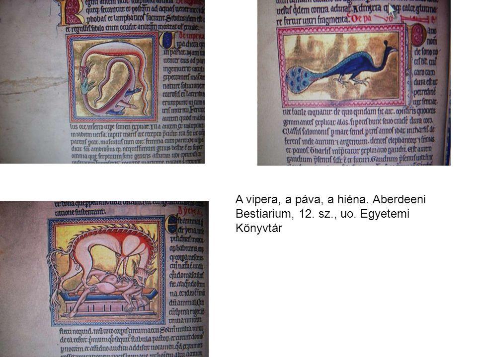A vipera, a páva, a hiéna. Aberdeeni Bestiarium, 12. sz., uo. Egyetemi Könyvtár