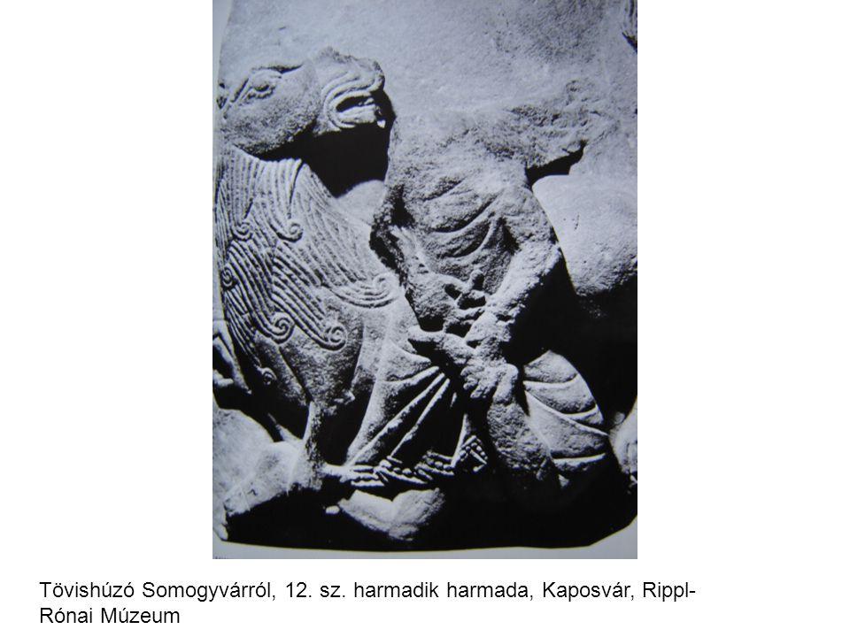 Tövishúzó Somogyvárról, 12. sz. harmadik harmada, Kaposvár, Rippl- Rónai Múzeum