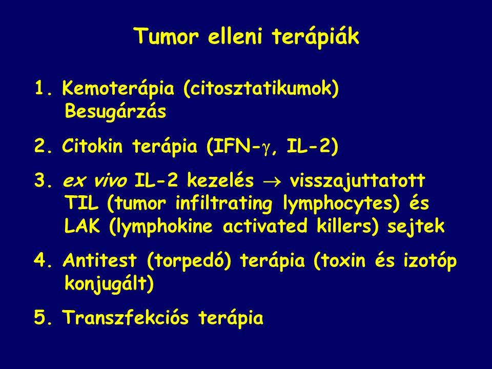 1.Kemoterápia (citosztatikumok) Besugárzás 2. Citokin terápia (IFN- , IL-2) 3.