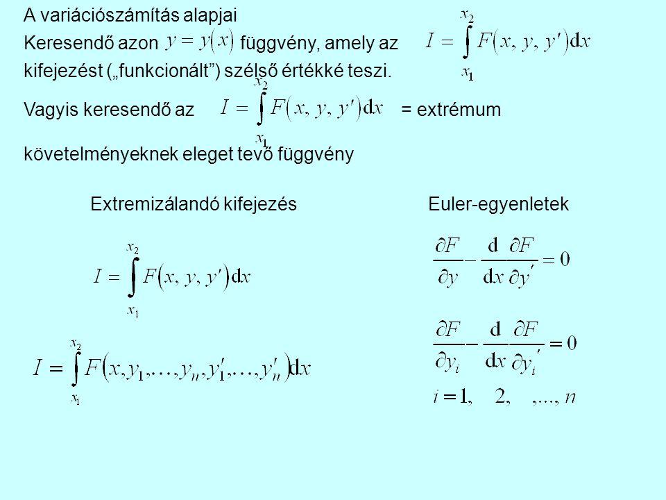 """Extremizálandó kifejezés Euler-egyenletek A variációszámítás alapjai Keresendő azonfüggvény, amely az kifejezést (""""funkcionált"""") szélső értékké teszi."""
