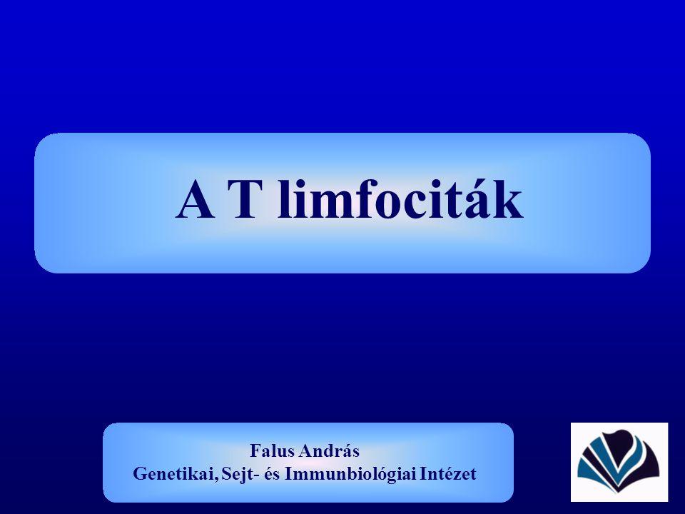 A T limfociták Falus András Genetikai, Sejt- és Immunbiológiai Intézet